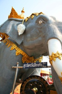 Holy elephant  in Chaing Rai