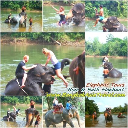 Bangkok Elephant Tour